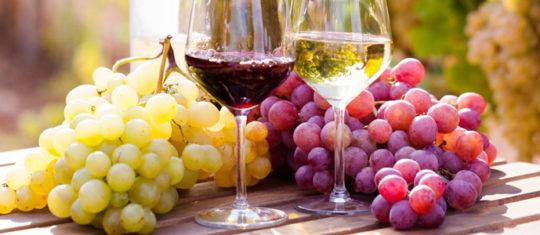 Vin de Buzet en ligne